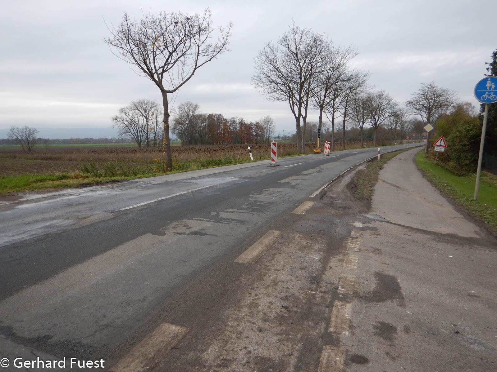 Bauarbeiten an der Umgehungsstrasse, sowohl Baumschnitt als auch Fahrbahnarbeiten