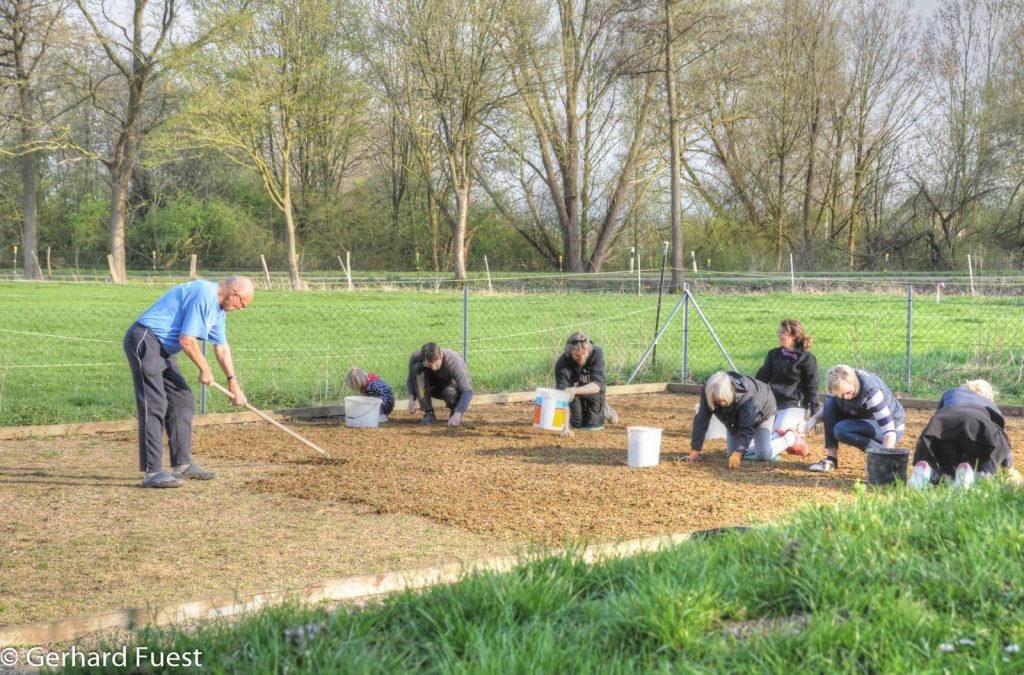 Hallerburg: Ortspflegetag 16.04.18